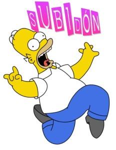 Homer subidón